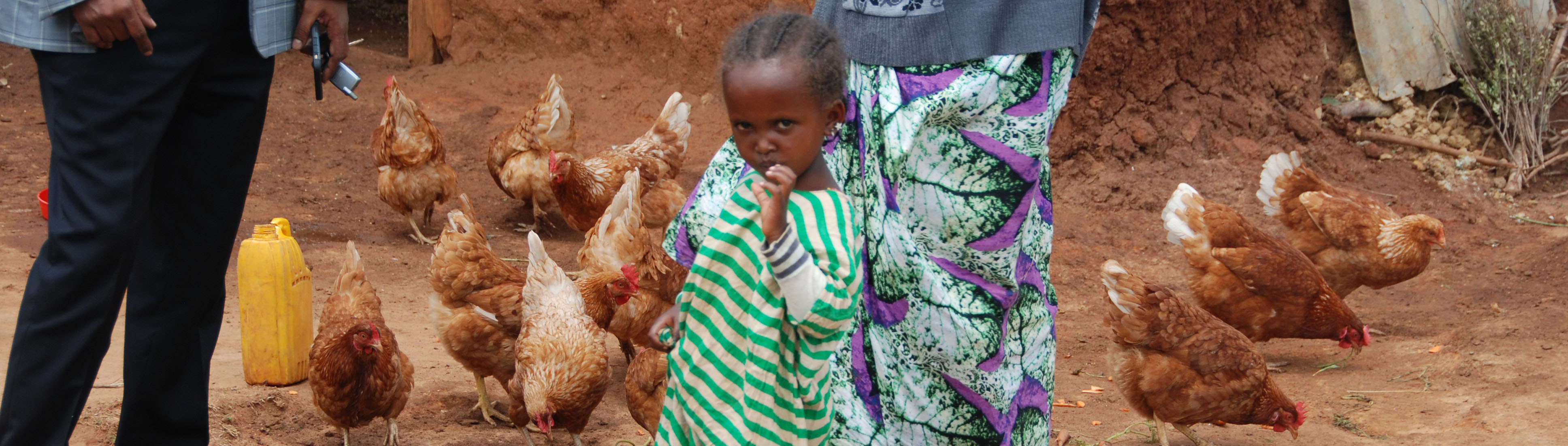 Ethiopian girl with chickens