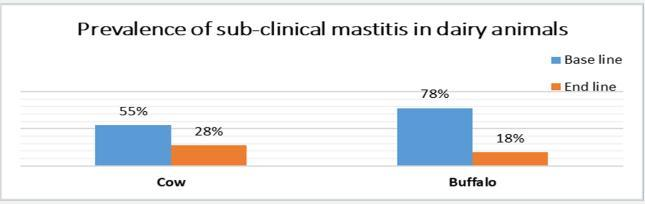 Mastitis control results